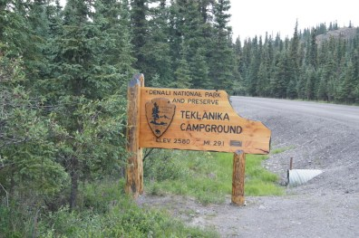 Welcome to Teklanika Campground