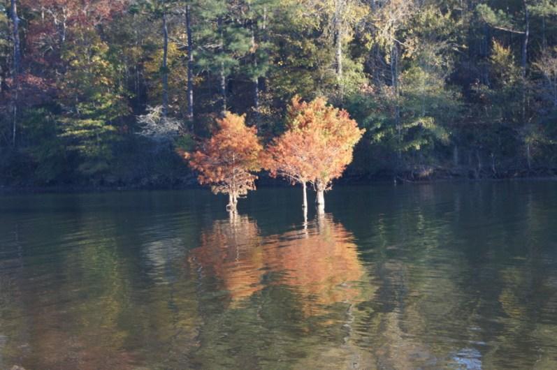 West Point Lake, Georgia
