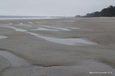 Beach in front of the Hunting Island, SC Lighthouse