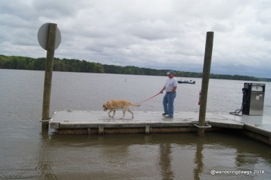 Dock next to the boat ramp at Lake Wateree
