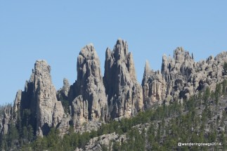 Along the Needle Highway in Custer State Park