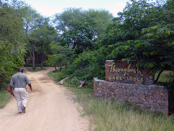 Entrance to Thornybush Lodge
