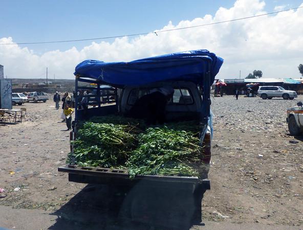 Qat Market in Yemen