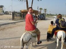 20100923.ryan-on-a-donkey