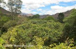 20140923_the-start-of-the-nature-reserve