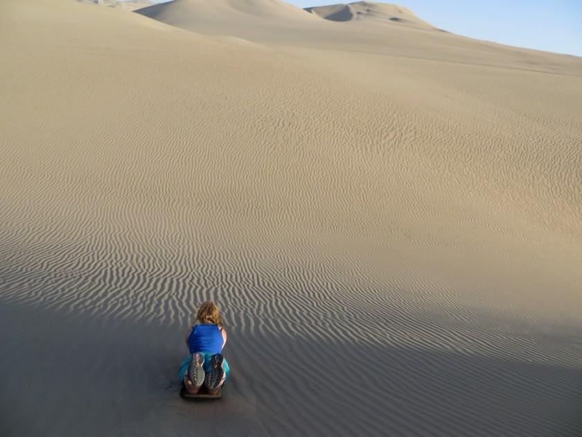 Wandering Feline Sandboarding Huacachina Peru