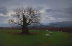 The Old Ash Tree