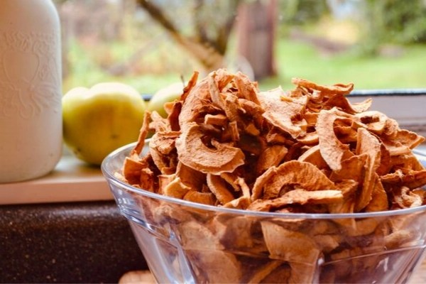 bowl of dehydrated apples, 1 ways to preserve apples