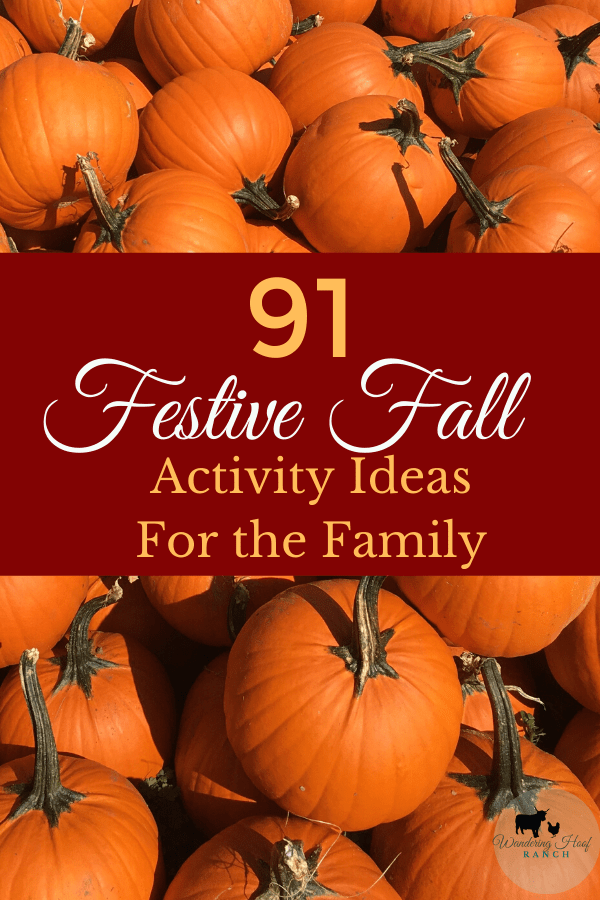 91 festive fall activities to do with the whole family. Frugal or free fun things to do together to make the most of the autumn season.