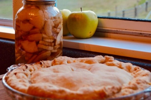 apple pie resting on counter