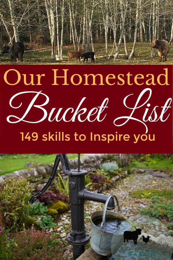 There really is a limitless amount of skills to learn on the homestead. These old fashioned skills are worth learning to be self sufficient