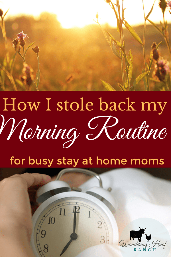 how I stole back my morning routine for busy at home moms