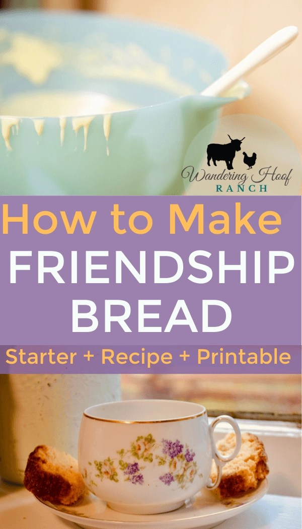 How to Make Friendship Bread pin