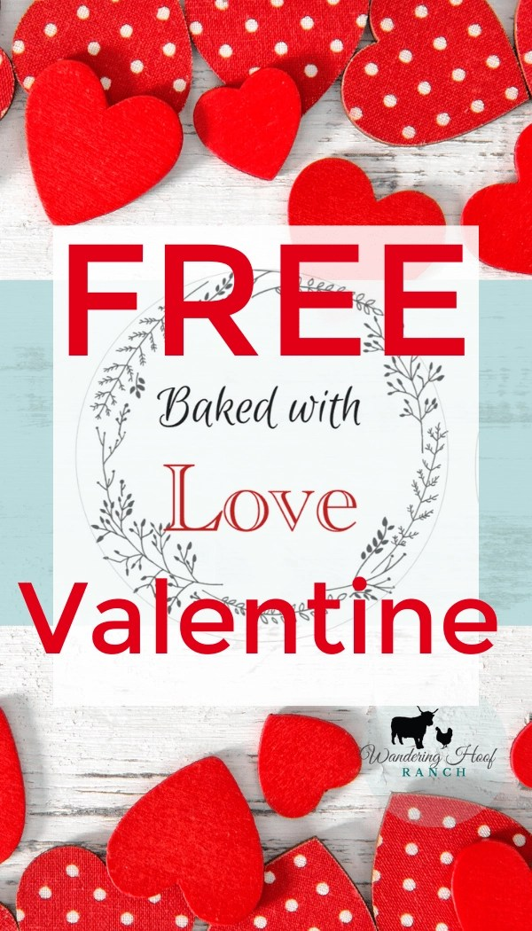 Turn your ordinary baking into an extraordinary handmade and special valentines day gift using our Baked with Love free labels!