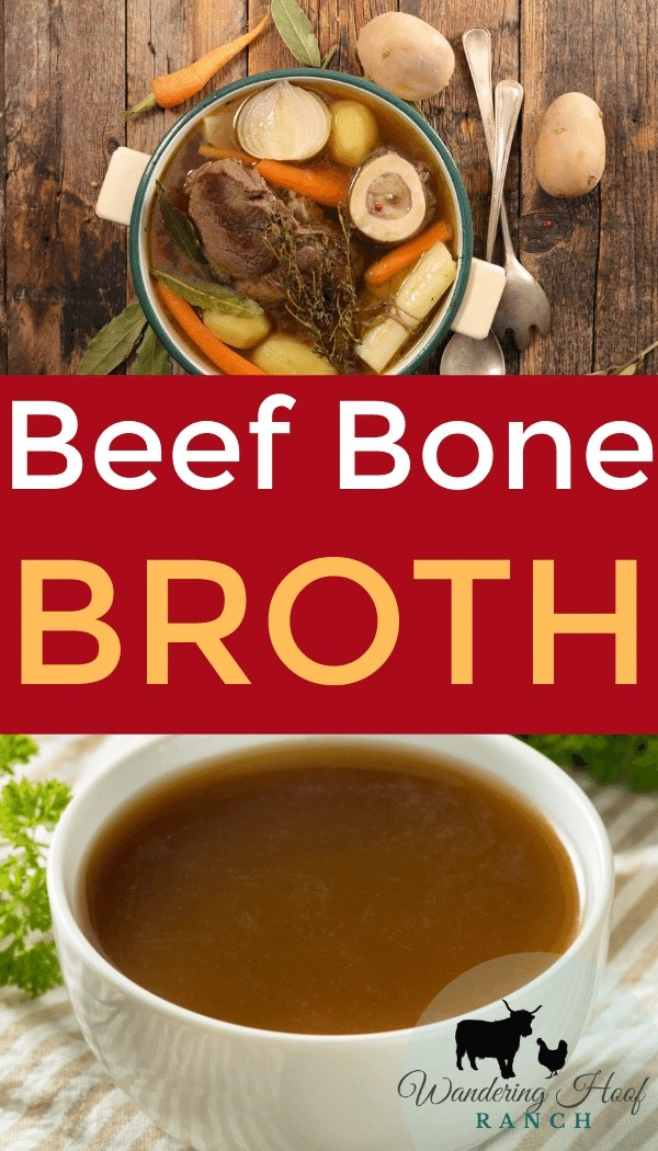 Learn just how easy it is to make beef broth soup using been soup bones with this quick guide for a healthy and frugal meal.