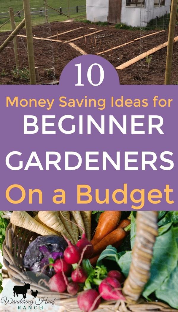 money saving ideas for beginner gardeners on a budget