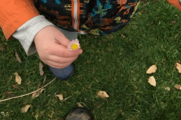 child with picked daisy