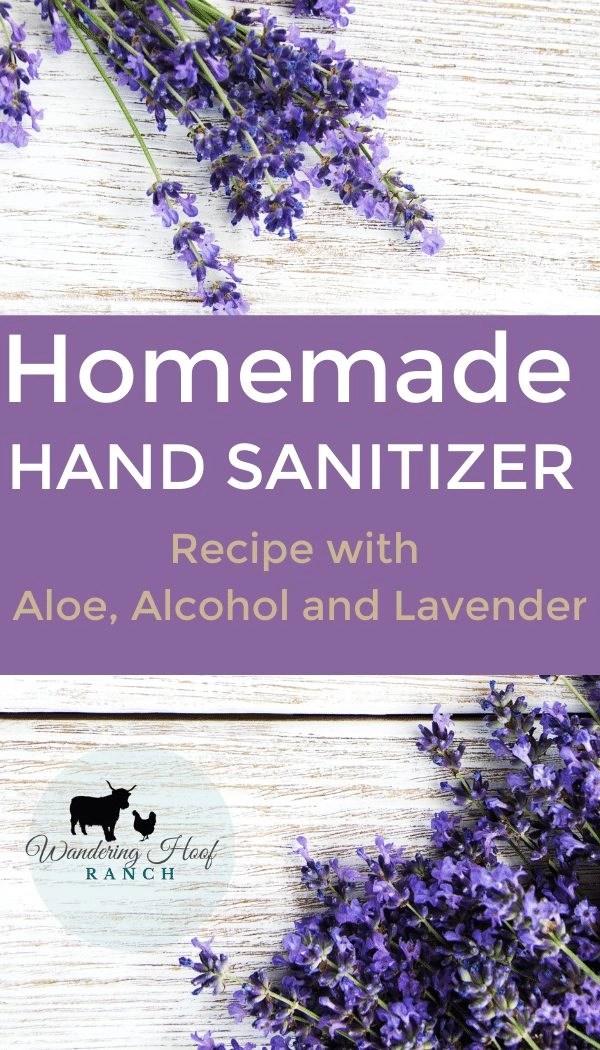 homemade hand sanititzer pin image