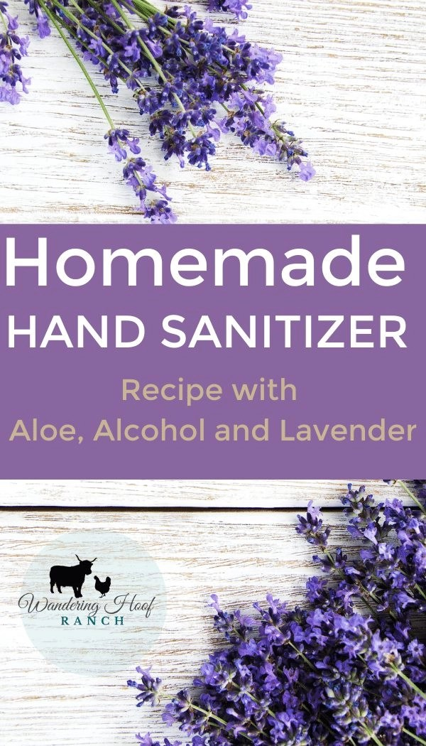 homemade hand sanititzer pin image
