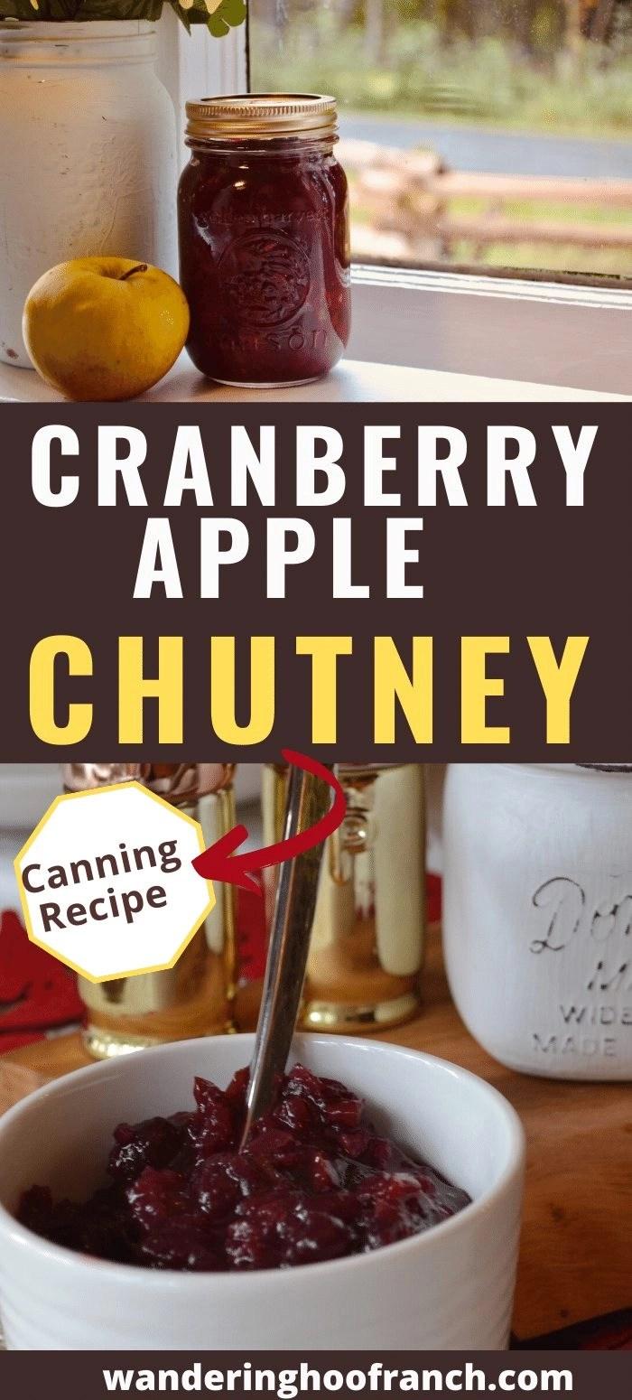 cranberry apple chutney pin