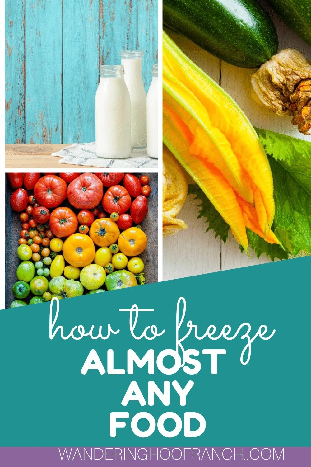 what foods can you freeze? image of buttermilk jug, zucchini and tomatoes