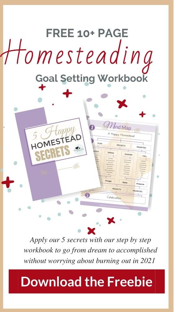 homestead goal setting workbook