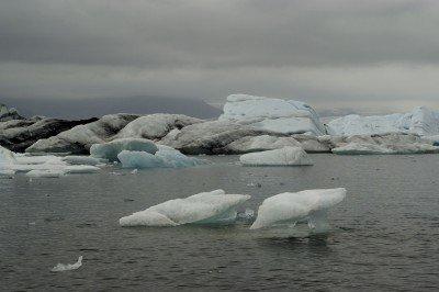 icebergs, glacier lagoon, jokullsarlon