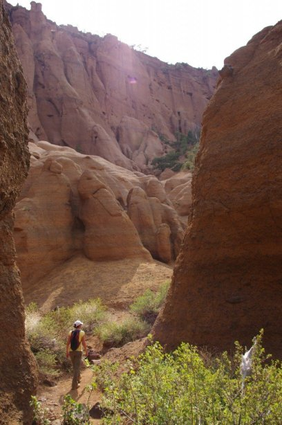 Red Mountain Arizona Hikes