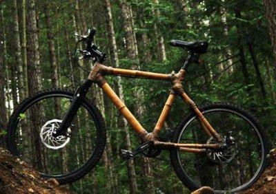 budget mountain bikes