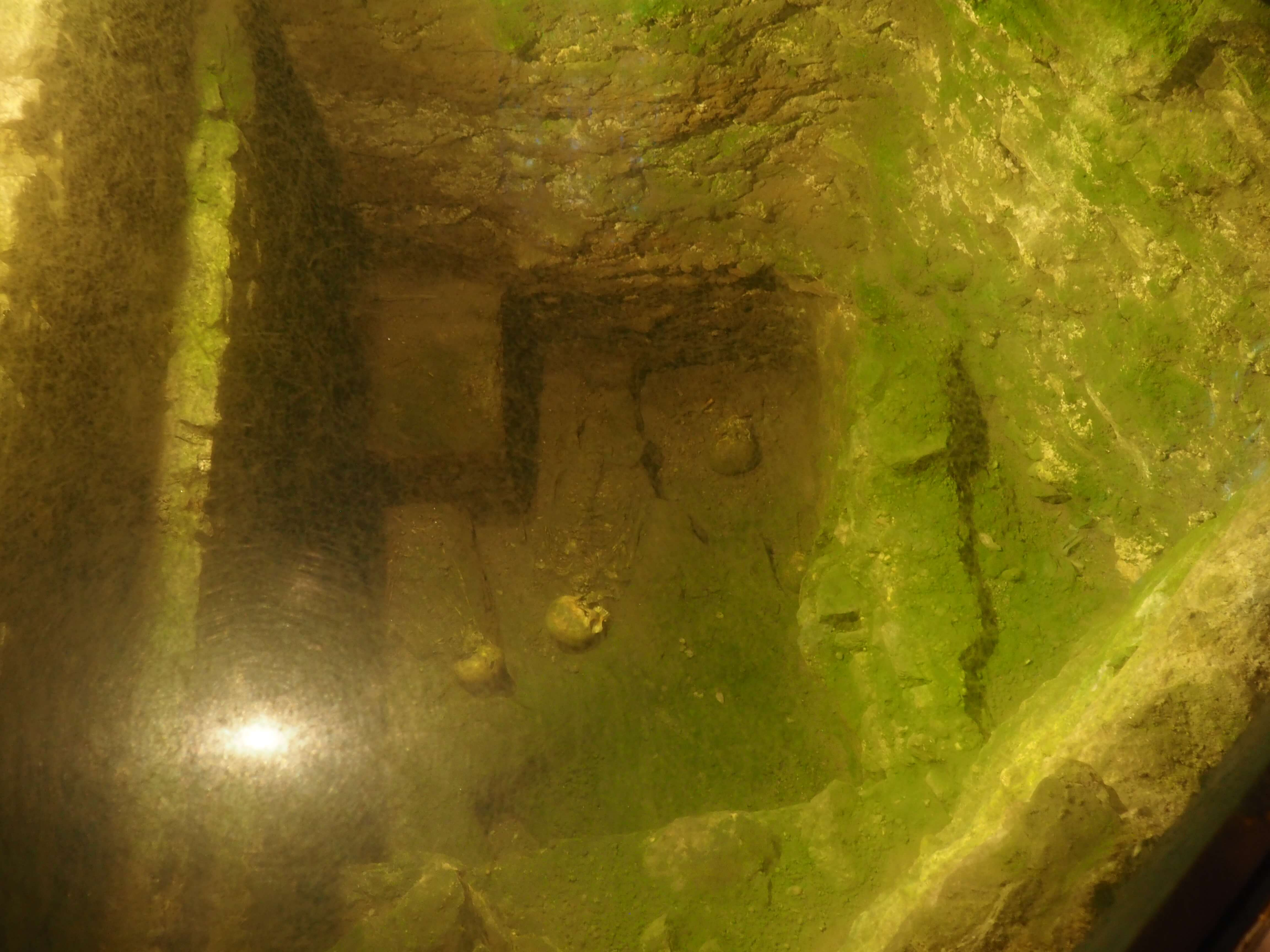View through glass panels of two skeletons in excavated cemetery.