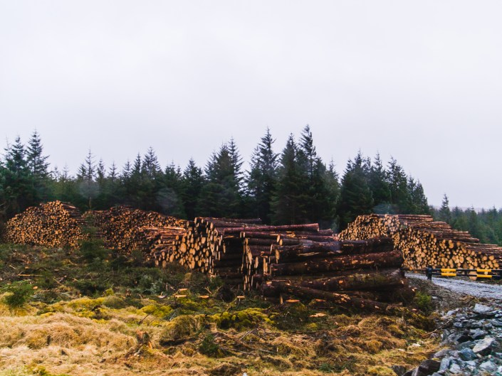 donegal lumber mill