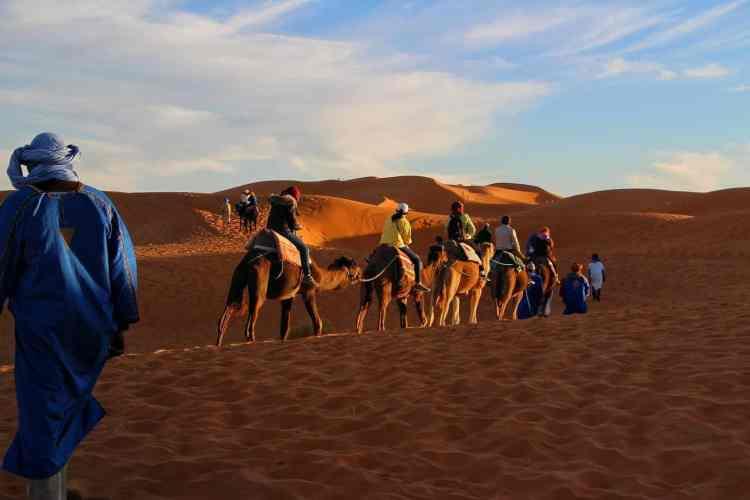 Camel ride in Riyadh