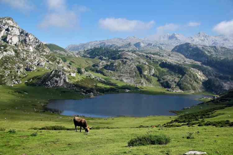 Camping in the Pyrénées