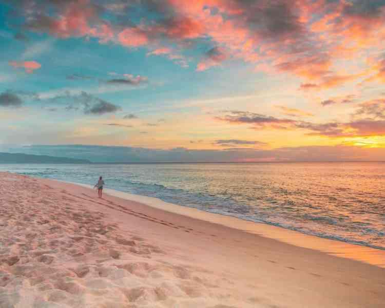 Aruba or Hawaii