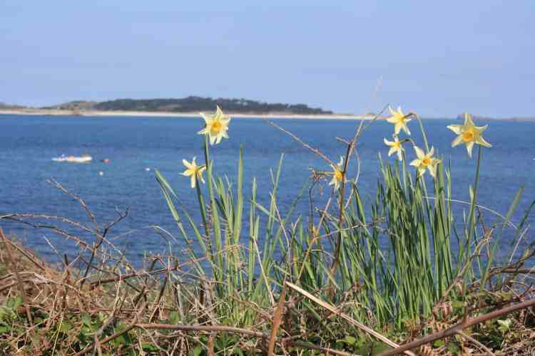 camping in the Isles of Scilly