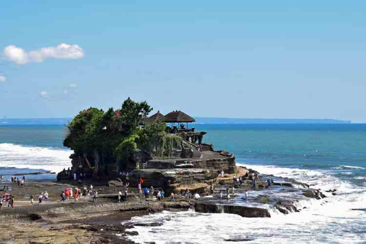 Wildlife in Bali   nature in Bali
