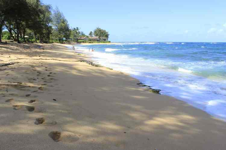 Kauai vs Big Island  Kauai or Big Island
