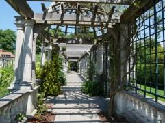 Hampstead Heath Pergola Gardens (2)
