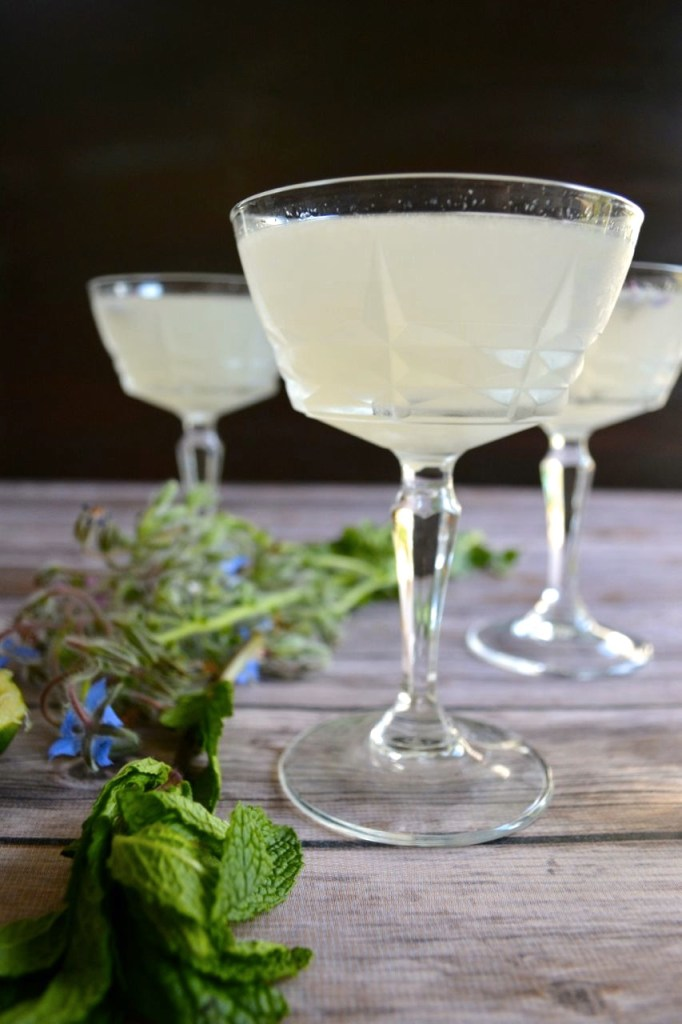 Garden Herb Gin Gimlet with Mint & Basil Simple Syrup