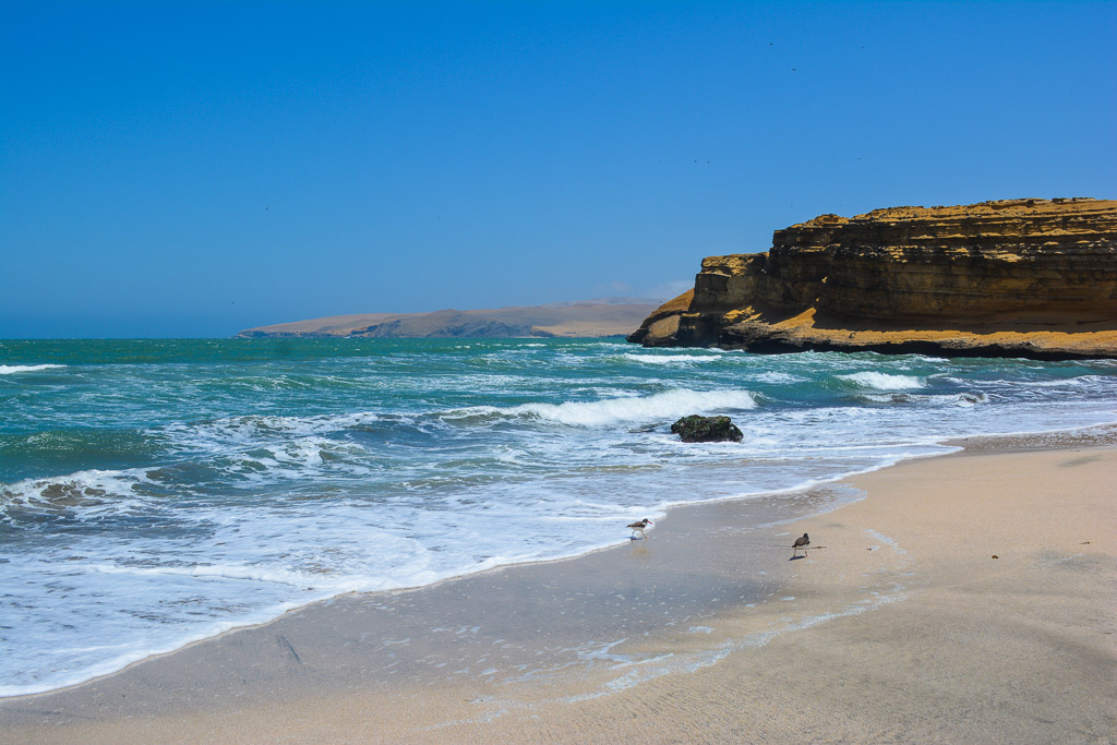 Ocean and Desert in Paracas National Reserve