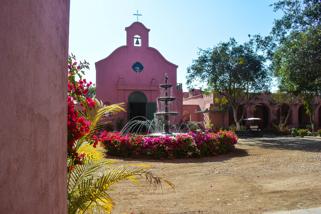 Tacama Winery in Ica, Peru