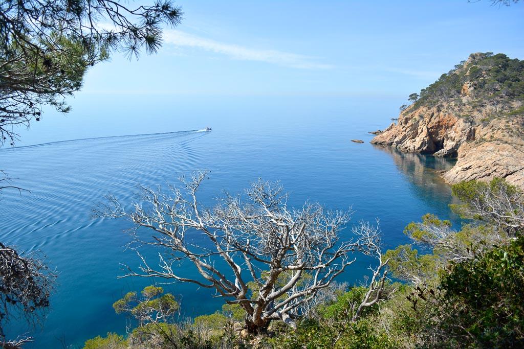 Coastline of the Costa Brava in Catalonia, Spain