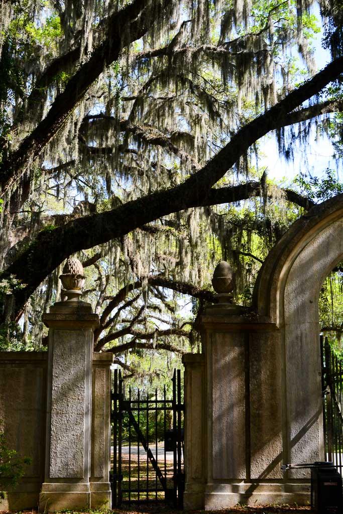 Wormsloe Historic Site in Savannah, Georgia