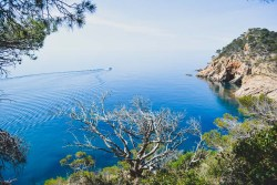 Travel Guide:  What to do in the Costa Brava