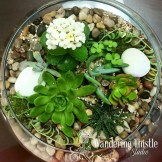 Our Terrarium Class repurposing  funky glass dishes.