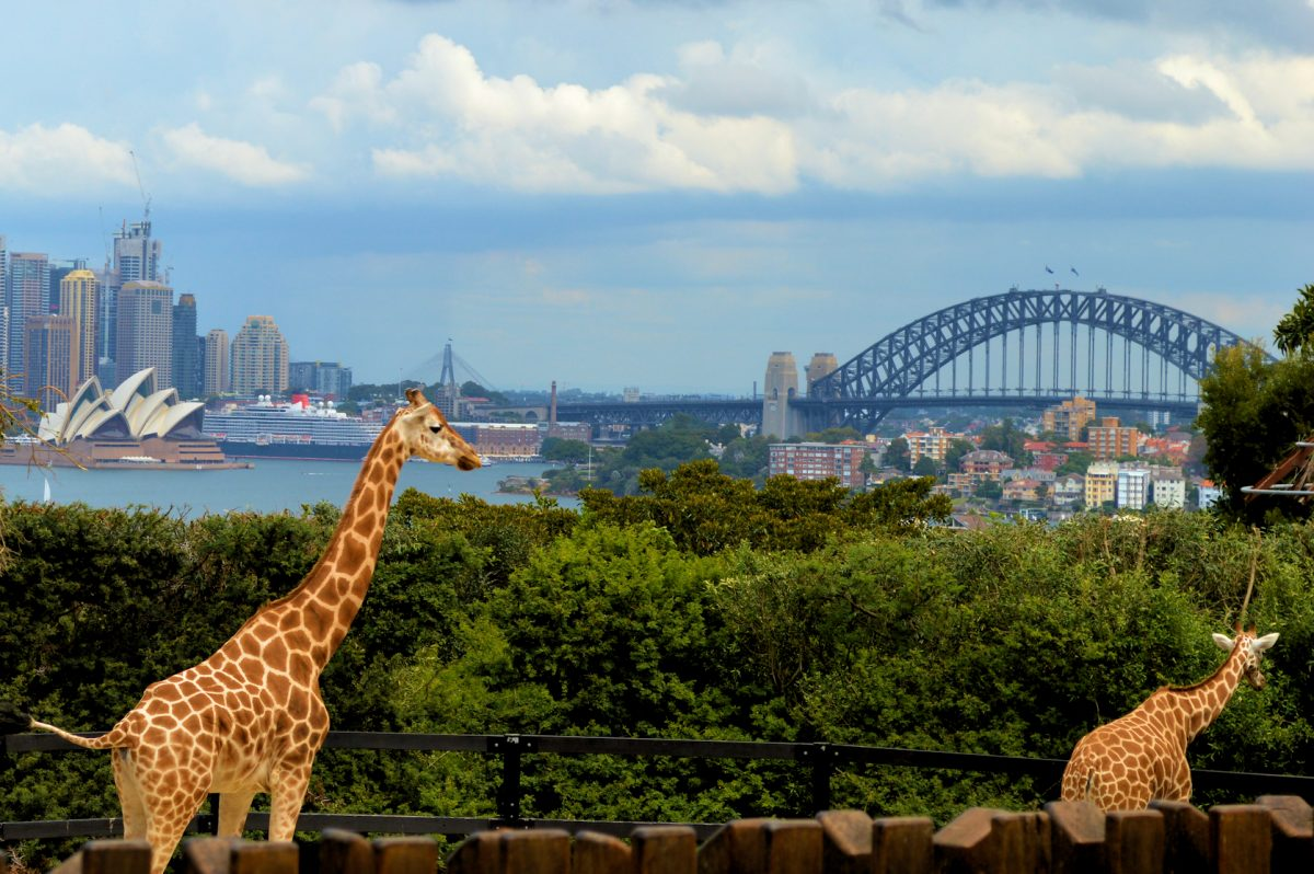 must-see-sights-in-sydney