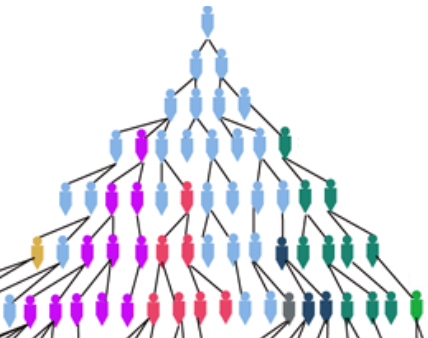 descendants tree with some lines dead ending
