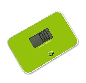 Travel Scale