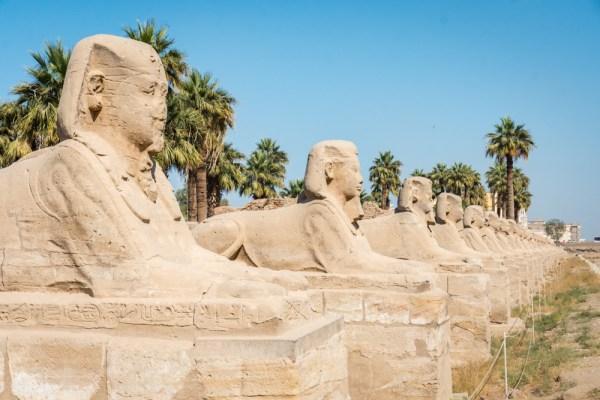 Sphinxes between Luxor and Karnak Temples, Luxor, Egypt by Wandering Wheatleys