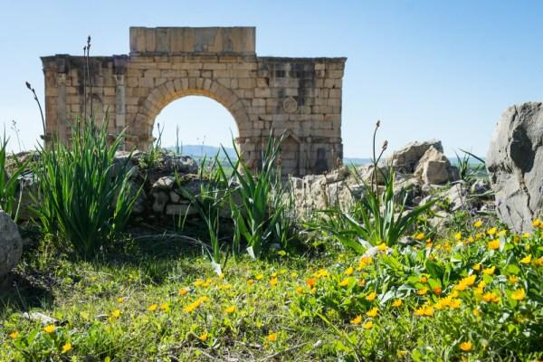 Triumphal Arch, Volubilis, Morocco by Wandering Wheatleys